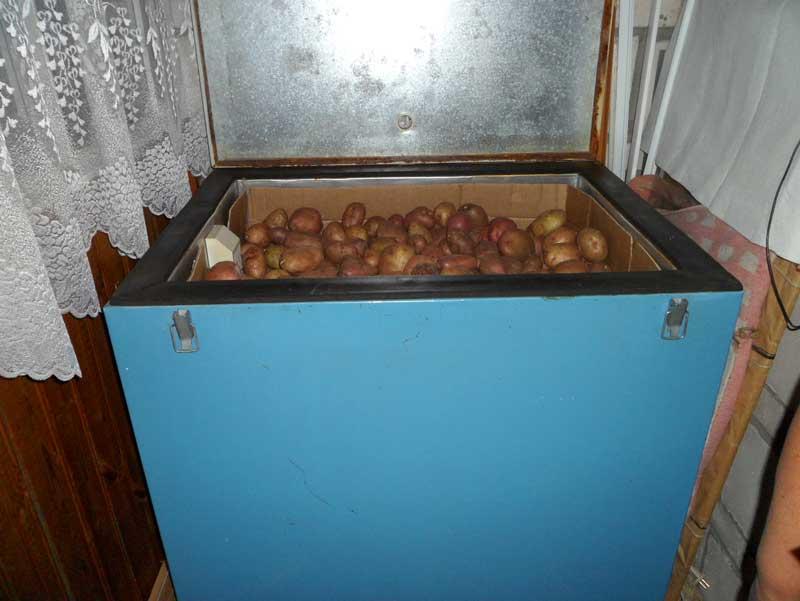 Ящик для картошки в квартире